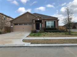 Photo of 6902 Wolfberry Lane, Baytown, TX 77521 (MLS # 12342276)