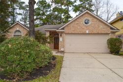 Photo of 27 Teak Mill Place, The Woodlands, TX 77382 (MLS # 16881322)
