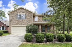 Photo of 2 Caelin Court, The Woodlands, TX 77382 (MLS # 17313545)