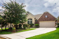 Photo of 75 Tapestry Forest Place, The Woodlands, TX 77381 (MLS # 23012122)