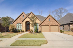 Photo of 23315 Robinson Pond Drive, New Caney, TX 77357 (MLS # 26047815)