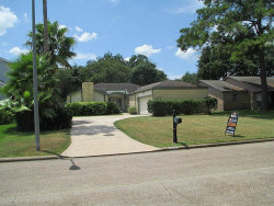 Photo of 22711 Black Willow Drive, Tomball, TX 77375 (MLS # 3123729)