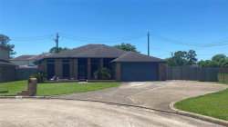Photo of 11402 Brook Meadow Drive, Houston, TX 77089 (MLS # 39793949)