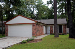 Photo of 3 Hasting Oak Court, The Woodlands, TX 77381 (MLS # 48685802)