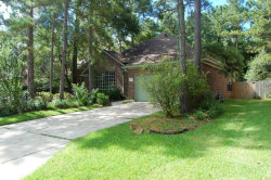Photo of 19 Barn Lantern Place, The Woodlands, TX 77382 (MLS # 48720844)