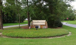 Photo of 122 N N Camelia Grove Circle, The Woodlands, TX 77382 (MLS # 5786153)