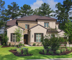 Photo of 31 Wrangler Pass Drive, The Woodlands, TX 77389 (MLS # 58241908)