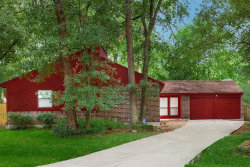 Photo of 9 Woodlot Court, The Woodlands, TX 77380 (MLS # 61705622)