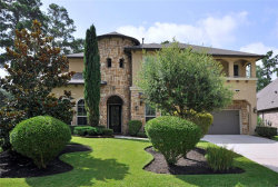 Photo of 71 S Spincaster Court, The Woodlands, TX 77389 (MLS # 63968193)