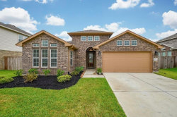 Photo of 16327 Tyler Reach Drive, Hockley, TX 77447 (MLS # 6792050)