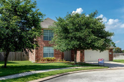 Photo of 8301 Seagull Lane, Pearland, TX 77584 (MLS # 70193557)