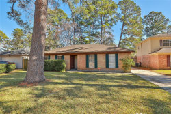 Photo of 23010 Earlmist Drive, Spring, TX 77373 (MLS # 80648829)