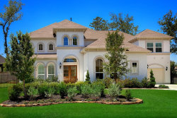 Photo of 102 S Curly Willow Circle, The Woodlands, TX 77375 (MLS # 85129114)
