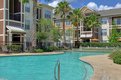 Photo of 201 Pruitt Road, Unit 1036, Spring, TX 77380 (MLS # 88916704)