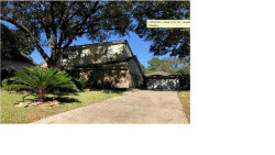 Photo of 13310 Holston Hills Drive, Houston, TX 77069 (MLS # 90479585)