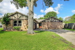 Photo of 324 S Kansas Street, La Porte, TX 77571 (MLS # 91835883)