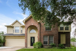 Photo of 20102 Bambiwoods Drive, Humble, TX 77346 (MLS # 95889752)