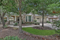 Photo of 43 Douvaine Court, The Woodlands, TX 77382 (MLS # 85500599)
