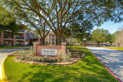 Photo of 2803 Kings Crossing Drive, Unit 119, Kingwood, TX 77345 (MLS # 94497620)