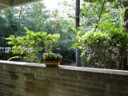 Photo of 3500 Tangle Brush Drive, Unit 97, The Woodlands, TX 77381 (MLS # 9584146)