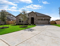 Photo of 522 Yellow Bullhead Court, Rosenberg, TX 77469 (MLS # 10369611)