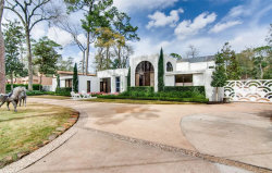Photo of 9102 Chatsworth Drive, Houston, TX 77024 (MLS # 11899919)