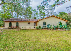 Photo of 1115 County Road 769, Brazoria, TX 77422 (MLS # 11947687)
