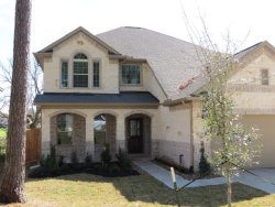 Photo of 507 Pine View Circle, Montgomery, TX 77356 (MLS # 12243108)