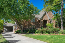 Photo of 23 Thunder Hollow Place, The Woodlands, TX 77381 (MLS # 13039131)