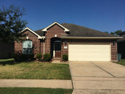 Photo of 12215 Se Iris Hollow Way, Houston, TX 77089 (MLS # 14225054)