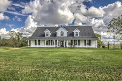 Photo of 360 County Road 2003 N, Liberty, TX 77575 (MLS # 14238412)