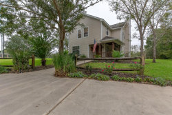 Photo of 3010 County Road 417, Brazoria, TX 77422 (MLS # 17061066)