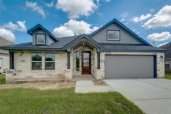 Photo of 9707 Highland Pointe, Needville, TX 77461 (MLS # 17244667)