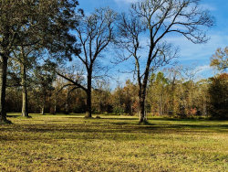 Photo of 7150 FM 1409, Dayton, TX 77535 (MLS # 17358591)