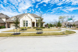 Photo of 23306 Hillsview Lane, New Caney, TX 77357 (MLS # 17628759)