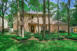 Photo of 45 W Torch Pine Circle, The Woodlands, TX 77381 (MLS # 17789241)
