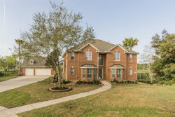 Photo of 1608 W Pine Branch, Pearland, TX 77581 (MLS # 17863596)