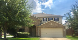 Photo of 15514 Early Elm Court, Houston, TX 77049 (MLS # 18714354)