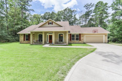Photo of 27003 Spotted Pony Court, Magnolia, TX 77355 (MLS # 18819099)
