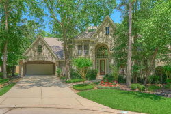 Photo of 14 Treevine Court, The Woodlands, TX 77381 (MLS # 20060168)