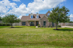 Photo of 10902 Harry Drive, Needville, TX 77461 (MLS # 20483905)