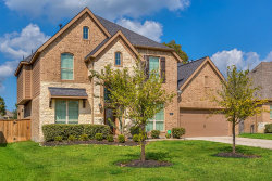 Photo of 111 Kate Place Court, Montgomery, TX 77316 (MLS # 21917463)