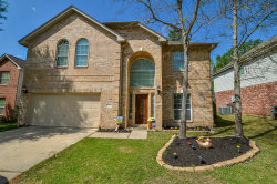 Photo of 217 Doncaster Street, Conroe, TX 77303 (MLS # 23186357)