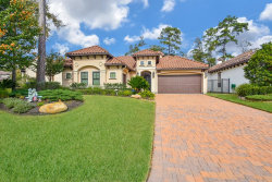 Photo of 22 Moatwood Court, The Woodlands, TX 77382 (MLS # 2390090)