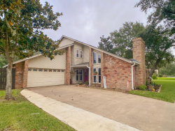 Photo of 2584 Olympia Drive, West Columbia, TX 77486 (MLS # 24331291)