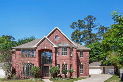 Photo of 23011 Briarhorn Drive, Spring, TX 77389 (MLS # 24493225)