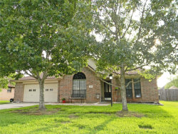 Photo of 123 Bumelia Street, Lake Jackson, TX 77566 (MLS # 24551172)