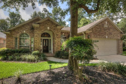 Photo of 26 S Creekmist Place, The Woodlands, TX 77385 (MLS # 25688754)