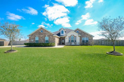 Photo of 11103 Emily Ruth Drive, Needville, TX 77461 (MLS # 27090641)