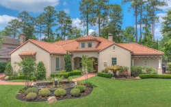 Photo of 67 Rhapsody Bend Drive, The Woodlands, TX 77382 (MLS # 27224918)